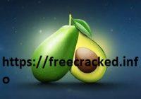 Avocode 3.9.3 Crack